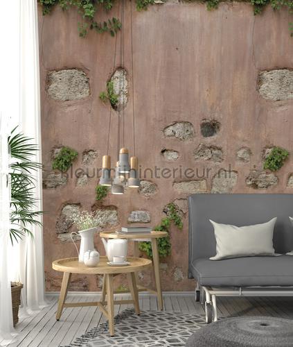 Buitenmuur met pleister en stenen papier murales ak1003 Moderne - Résumé Behang Expresse
