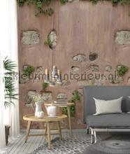 Buitenmuur met pleister en stenen papier murales ak1003 Looks Behang Expresse