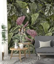 Exotische bladeren papier murales Behang Expresse Looks ak1028