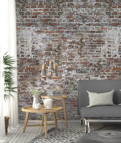 Oude muur van rode bakstenen fotomurais ak1049 Moderno - Abstrato Behang Expresse