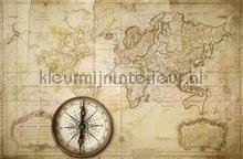 Du Globe Terres photomural Rebel Walls world maps