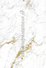 Marmer wit goud papier murales Kek Amsterdam classique