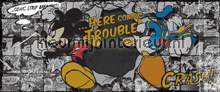 Disney Mickey & Donald fotobehang Kleurmijninterieur Disney---Pixar