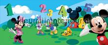 Disney Mickey & Friends fotobehang Kleurmijninterieur Disney---Pixar