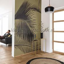 Honey palm fotobehang Caselio York Wallcoverings