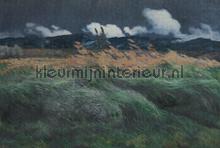 Landscape fotobehang Dutch Wallcoverings Painted Memories 8005