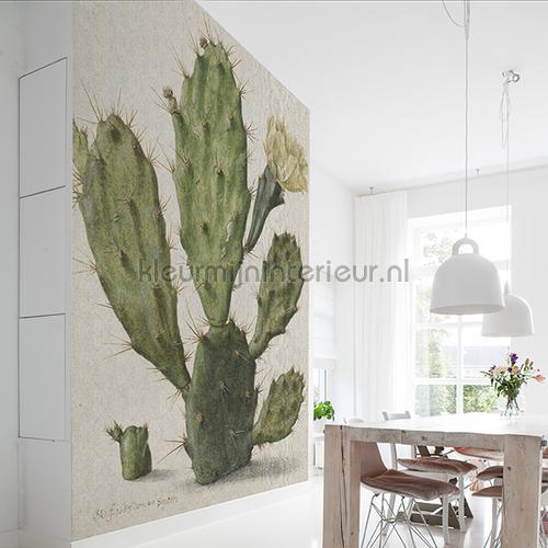 Blooming cactus fotomurales 8013 Painted Memories Dutch Wallcoverings