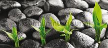 Zen stones fotobehang AG Design Oosters Trompe loeil