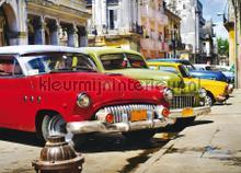 Gekleurde oldtimers fototapet AG Design teenagere