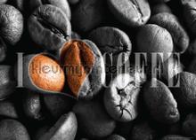 I love coffee fototapet AG Design verdenskort