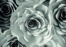104715 fotomurales AG Design PiP studio wallpaper