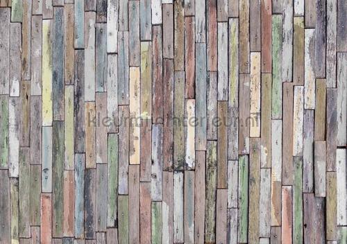 Sloopthout muur fotomurales ftn-s-2478 Moderno - Abstracto AG Design