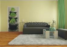 Rustgevende combinatie fottobehaang AG Design _intrieur