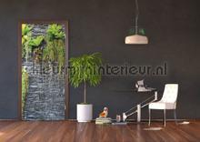 Hangplanten muur fotobehang AG Design Modern Abstract
