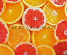 104607 fotomurais AG Design PiP studio wallpaper