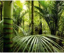 Tropische jungle fototapet AG Design verdenskort
