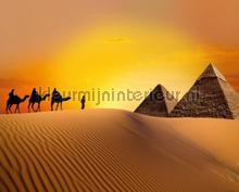 Op weg naar de piramides papier murales AG Design PiP studio wallpaper