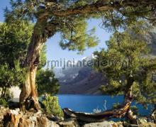 Look at the mountains fototapet AG Design verdenskort