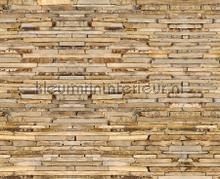 Platte stenen muur fototapet AG Design verdenskort