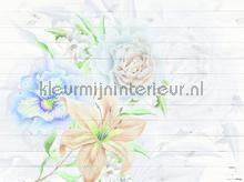 104620 fotomurais AG Design PiP studio wallpaper