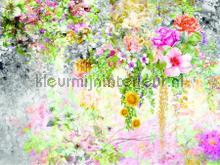 104628 fotomurais AG Design PiP studio wallpaper