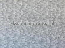 104633 fototapet AG Design verdenskort