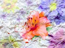 104666 fotomurales AG Design PiP studio wallpaper