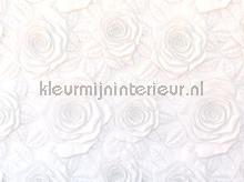 104668 fotomurales AG Design PiP studio wallpaper