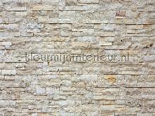 Natuur stenen muur fototapeten AG Design weltkarten