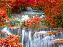 Waterfall with flowers fotomurali AG Design Photomurals Premium Collection ftn-xxl-2437