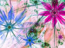 104613 fotomurais AG Design PiP studio wallpaper