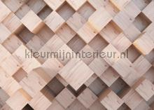 Houten 3d blokken structuur fotomurales AG Design Sol Mar Playa