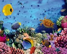 Coralreef fotobehang AG Design Zon Zee Strand