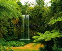 Green falls fototapet AG Design verdenskort