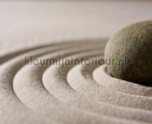 Stone vibration fotobehang AG Design Modern---Abstract