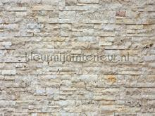 Stone wall fotobehang AG Design Grafisch Abstract