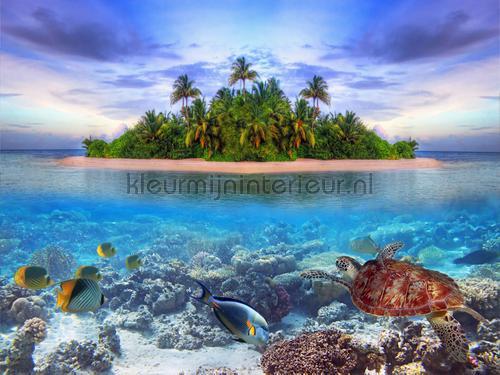 Tropisch eiland in en onder  water fotobehang  FTXXL 1446  Interieurvoorbeelden fotobehang AG Design