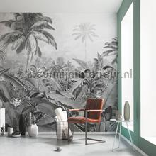 amazonia black and white fotobehang p013-vd4 Pure Komar
