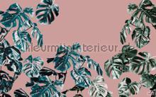 Monstera rose fotobehang Komar Bloemen Planten