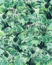 Evergreen fotomurali Komar sport