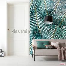 palm canopy fotobehang p025-vd2 Pure Komar