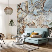 marble fotobehang p032-vd4 Pure Komar