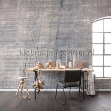 concrete fototapet p744-vd4 Pure Komar