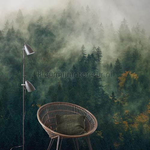 tales of the carpathians fotobehang psh036-vd3 Pure Komar