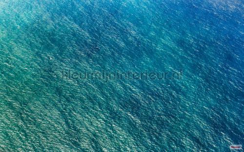 blaupause fotobehang psh096-vd4 Pure Komar