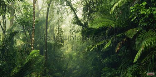 tropenwelten fotobehang psh098-vd5 Pure Komar