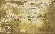 Old Map photomural Coordonne world maps