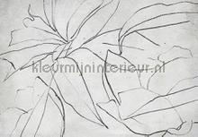 abstract flora concrete fotomurales Coordonne Random Papers 2 6800406