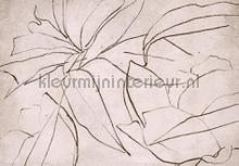 abstract flora rose fotomurales Coordonne Random Papers 2 6800407