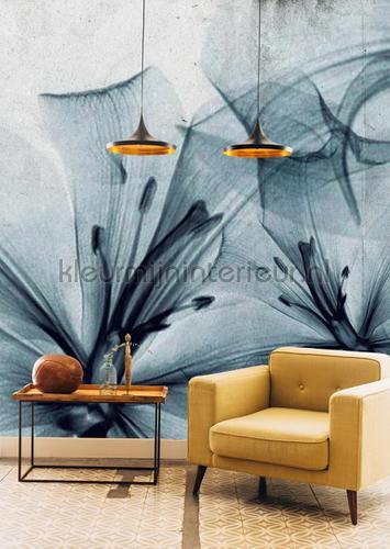 gigant flora fotomurais 6800410 Mural room set photo's Coordonne